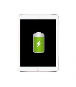 Réparation Apple iPad Pro 9.7 Batterie (Réparation uniquement en magasin)